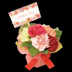 【送料無料】カーネーション花束 母の日ギフト