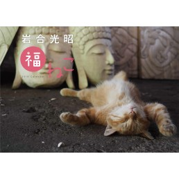 岩合光昭 福ねこ2019 カレンダー